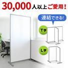 100-SPT001