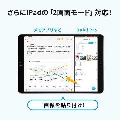 iPhoneカードリーダー(バックアップ・microSD・Qubii Pro・iPad・充電・カードリーダー・簡単接続・USB3.1 Gen1・ファイルアプリ対応・ネット不要・ネット接続不要)