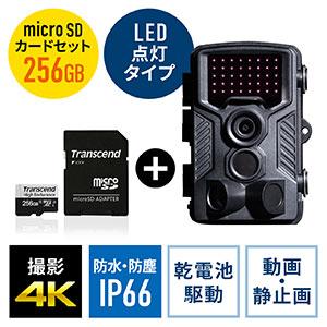 防犯カメラ トレイルカメラ+256GB microSDXCカードのセット(400-CAM091+TS256GUSD350V)
