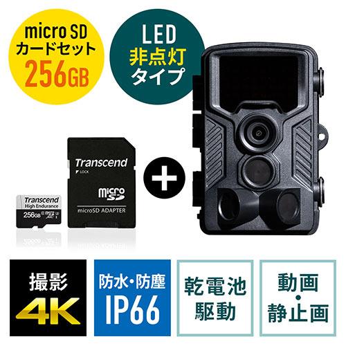 防犯カメラ 不可視赤外線LED搭載のトレイルカメラ+256GB microSDXCカードのセット(400-CAM092+TS256GUSD350V)