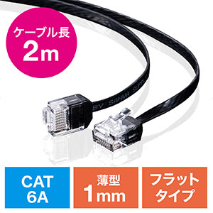 LANケーブル(カテ6A・より線・ストレート・フラット・ブラック・2m)