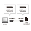USB Type C ケーブル(USB3.1 Gen2・PD対応・3A・ブラック・1m)