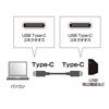 USB Type C ケーブル(USB3.1 Gen2・PD対応・5A・ブラック・1m)