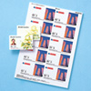 フォト光沢名刺カード(カラーレーザー用・10シート)